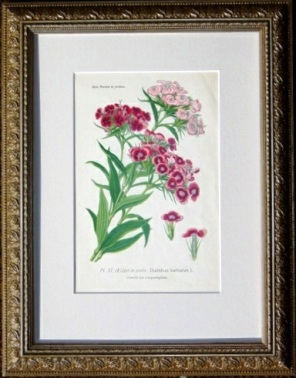 Antique Framed Embroidery
