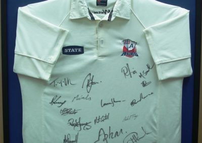 Auckland Aces cricket Shirt