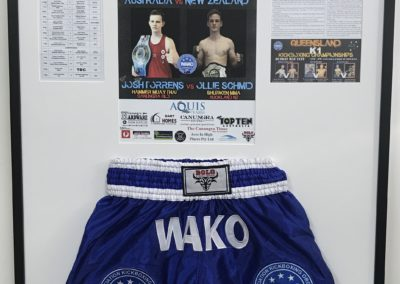 Kick Boxing Shorts and Photos
