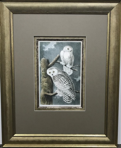 NZ Art & Framing Comp  Entry