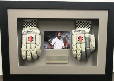 Kane Williamson Cricket Gloves