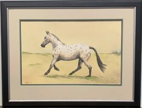 Horse Watercolour Drawing