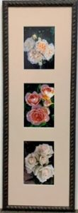 Roses in a decorative frame
